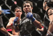 Joseph Benavidez UFC 225 Sergio Pettis