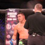 Fernando Gonzalez, Bellator MMA