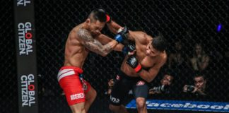 ONE Championship: Heart of the Lion Bibiano Fernandes