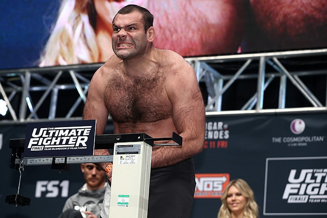 Image result for aleksander emelianenko gonzaga