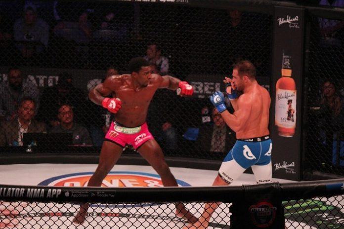 Phil Davis Bellator MMA