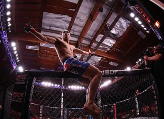 Marlon Moraes UFC