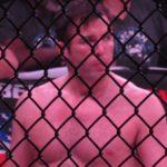 Chael Sonnen, Bellator MMA