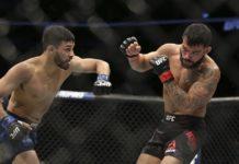 Julio Arce UFC 220
