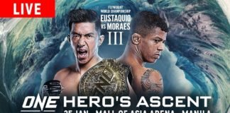 ONE Championship: Hero's Ascent