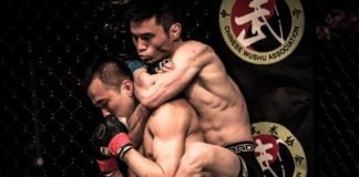 UFC Shenzhen Heili Alateng