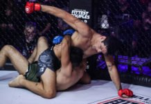 Robson Gracie Jr Bellator MMA