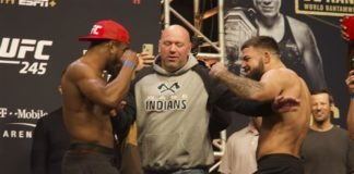 Geoff Neal and Mike Perry UFC 245