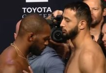 Jon Jones and Dominick Reyes, UFC 247