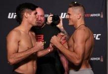 Vicente Luque and Niko Price, UFC 249