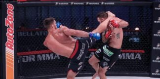 Bellator 244's Vadim Nemkov and Ryan Bader