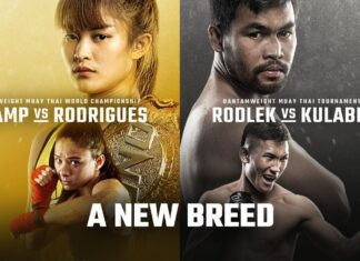 ONE Championship: A New Breed