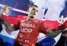 Roberto Soldic KSW