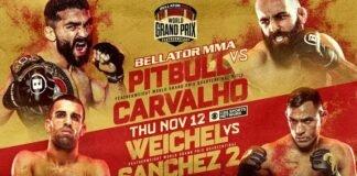 Bellator 252 poster