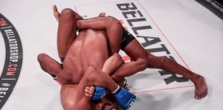 Darrion Caldwell and A.J. McKee, Bellator 253