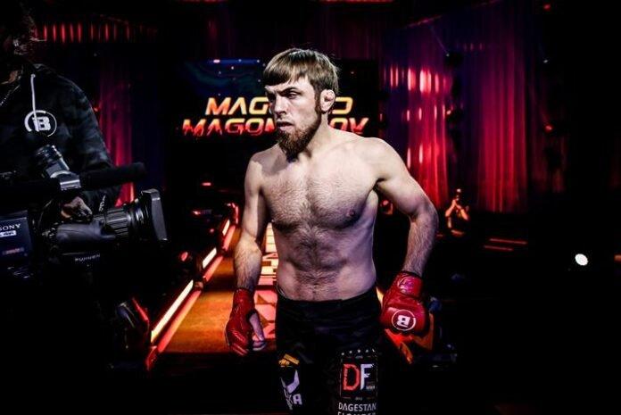 Magomed Magomedov Bellator 254