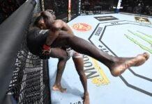 Alonzo Menifield and Fabio Cherant, UFC 260