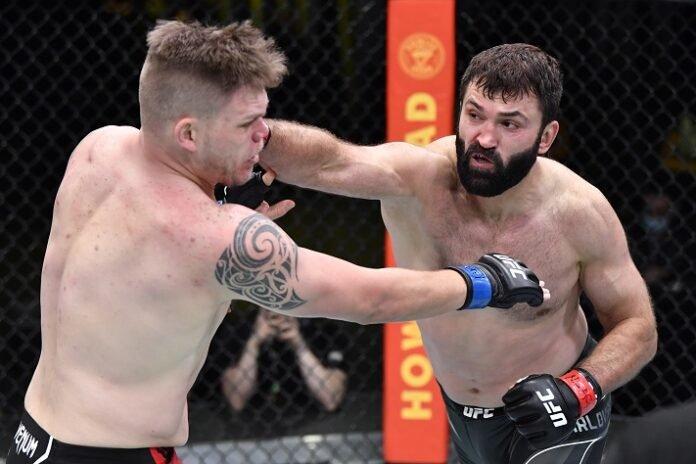 Chase Sherman and Andrei Arlovski, UFC Vegas 24