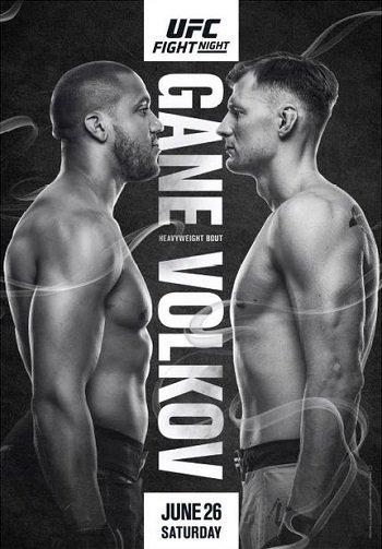 UFC Fight Night 190