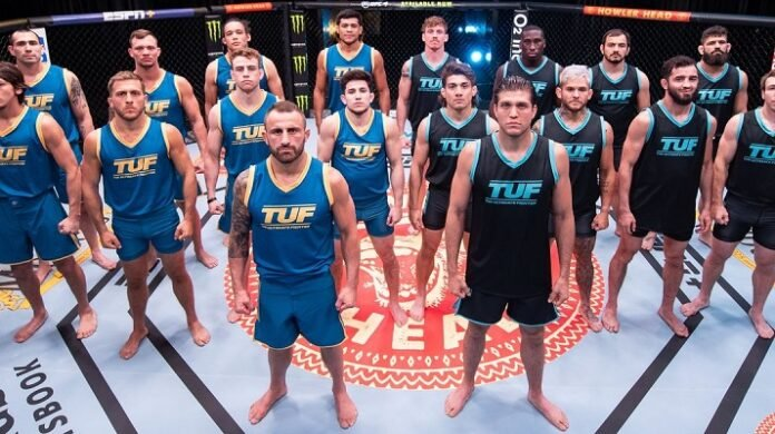 The Ultimate Fighter 29 (TUF 29)