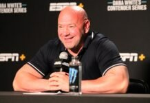 Dana White, UFC